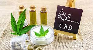 The best CBD Shop Online to buy formulas and natural products